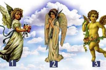 Тест Ангелы
