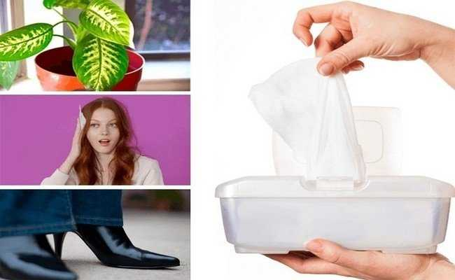 20 идей для использования влажных салфеток в быту